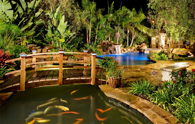 Koi and pond sites water garden links for Koi for sale san diego