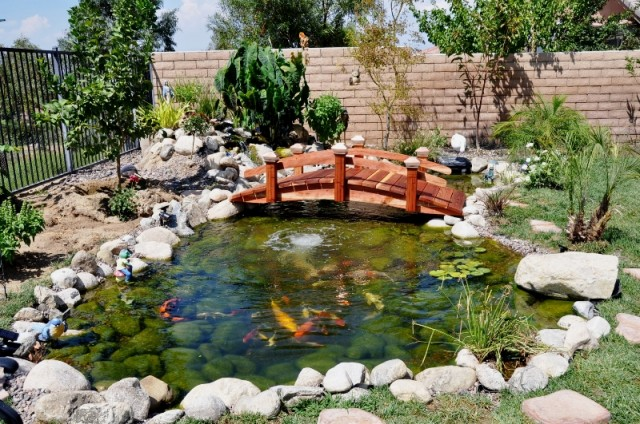 Short post bridges photo gallery for Nice koi fish pond